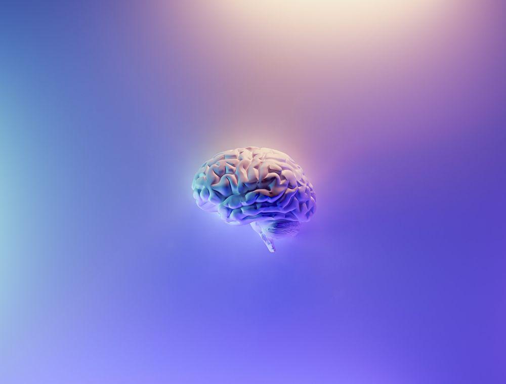 Mesenchymal Stem Cells & the Blood-Brain Barrier (BBB)