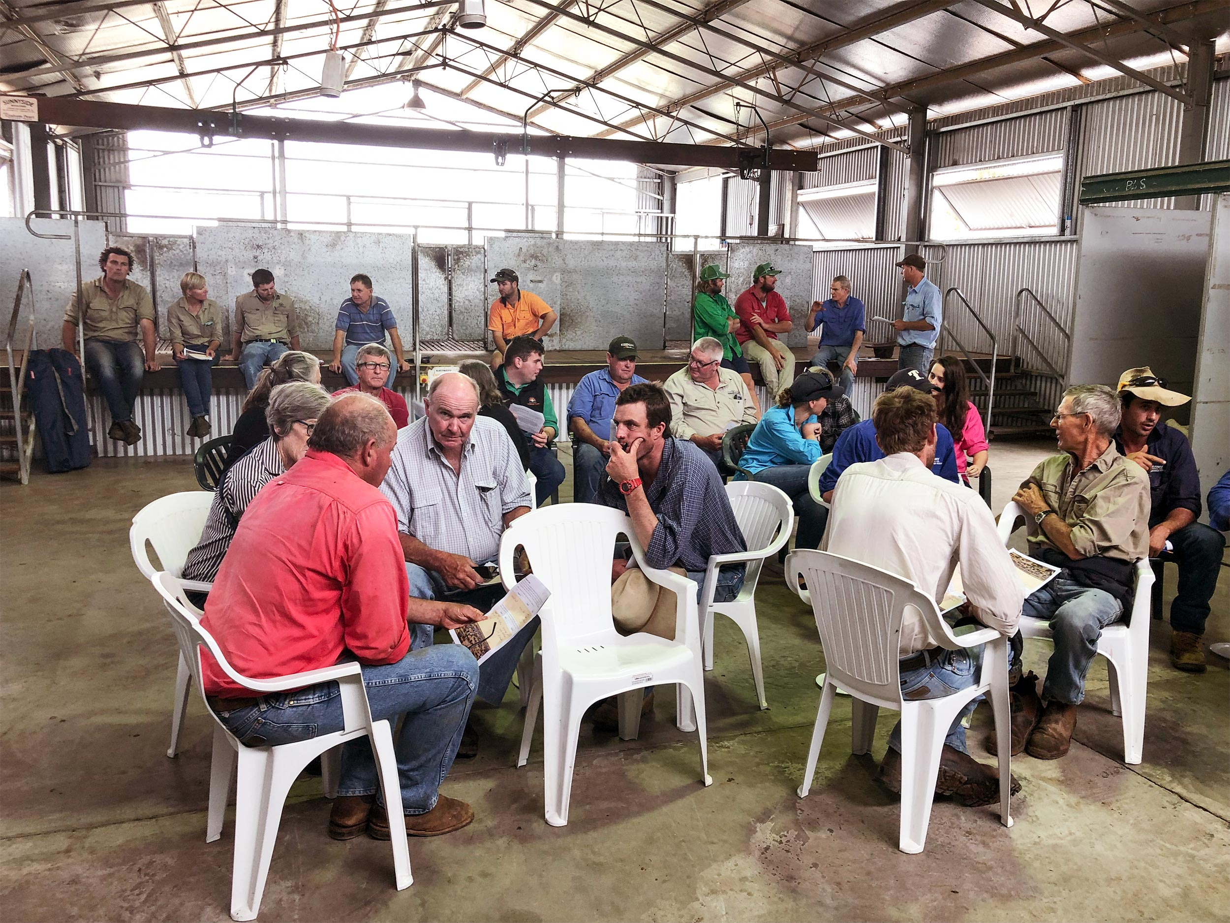 Group of farmers gathered at a sheep genetics workshop