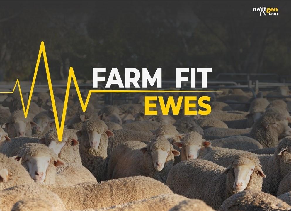 Farm Fit Ewes with neXtgen Agri