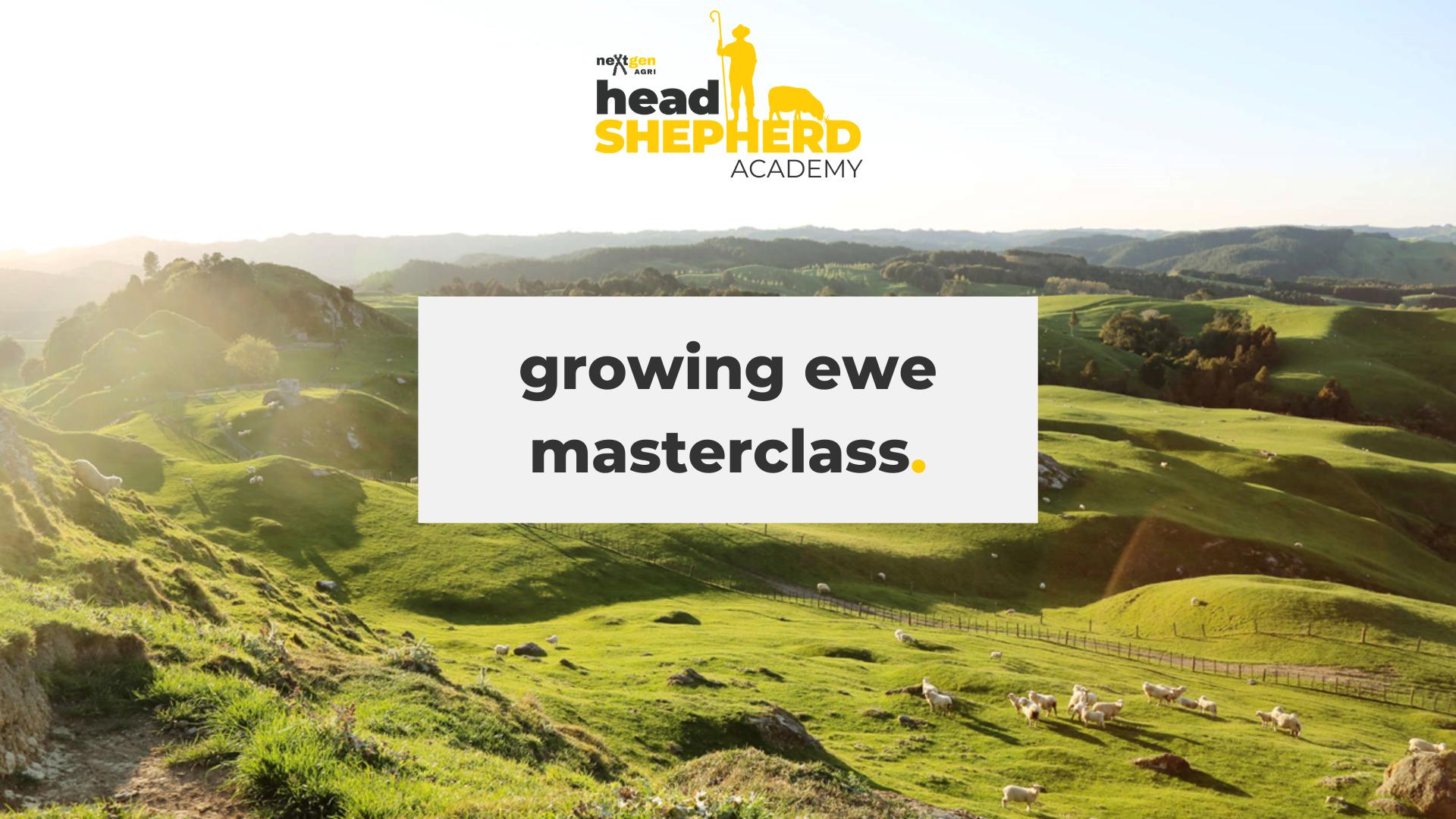 Growing Ewe Masterclass with neXtgen Agri