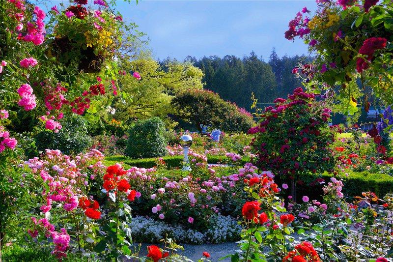 Victoria Butchart Gardens