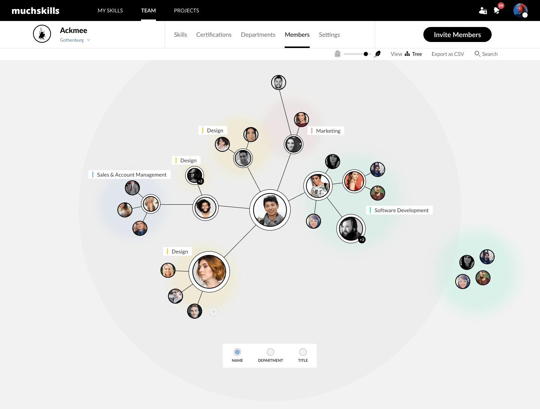 Org chart - skills based org chart - MuchSkills