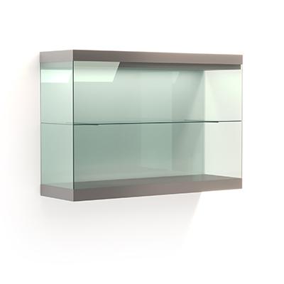 Настенная витрина с распашной дверцей и полками