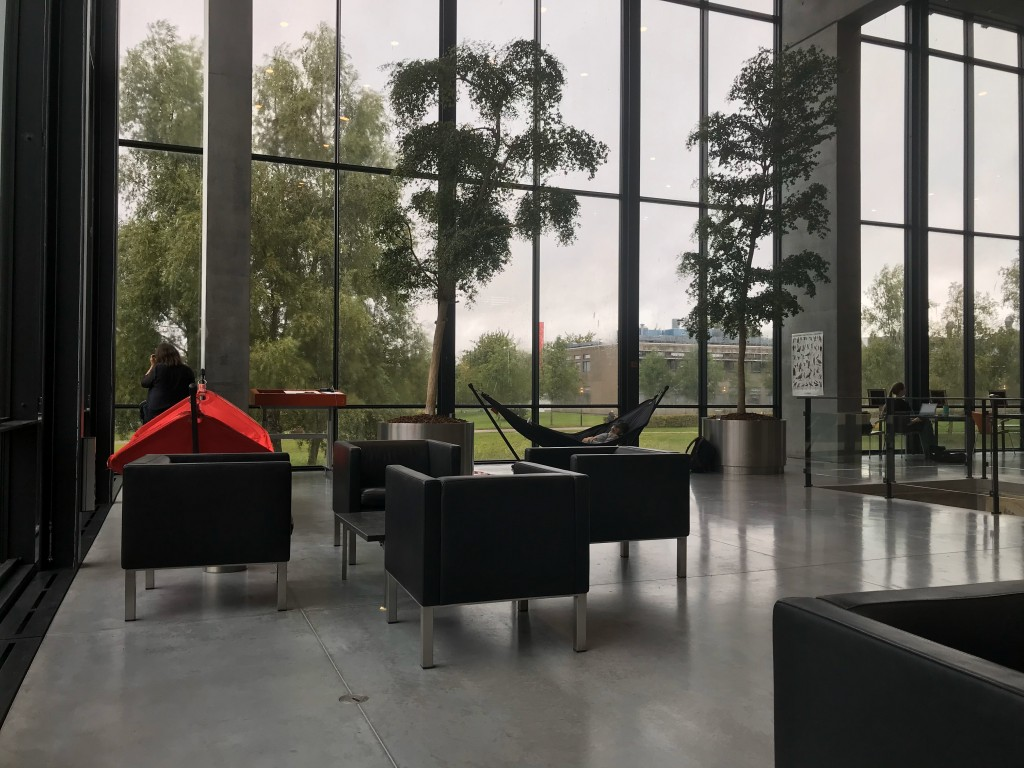 Inside a library: spaces to sit, big windows, tall potted trees