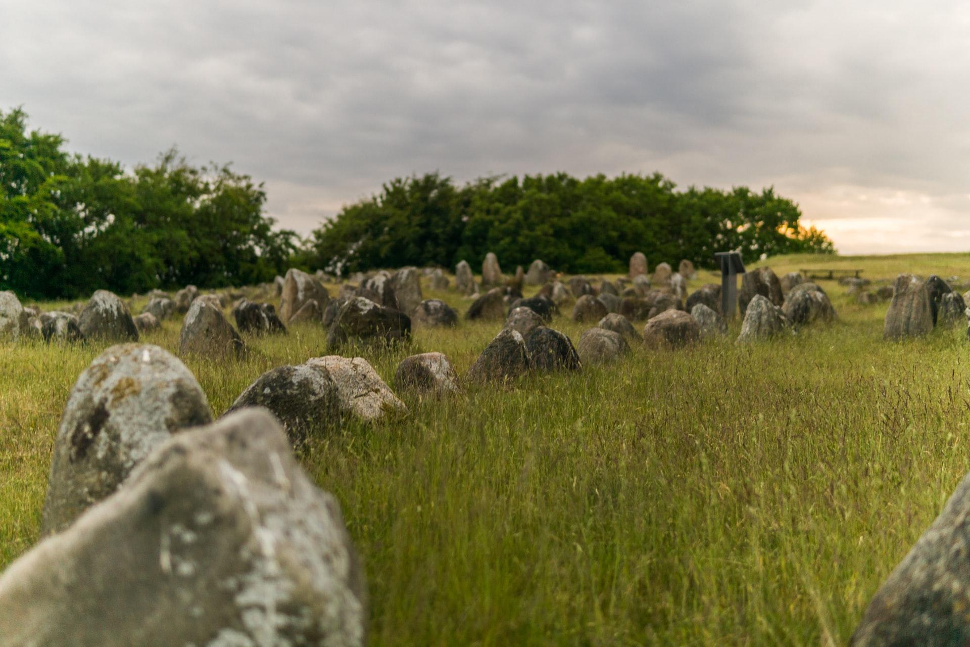rocks spread on a field