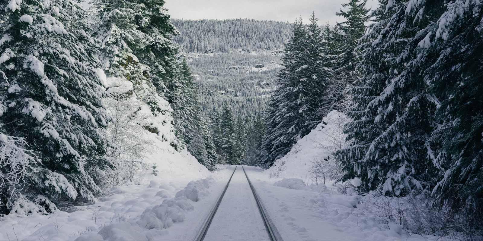 Best Luxury Christmas Train Trips