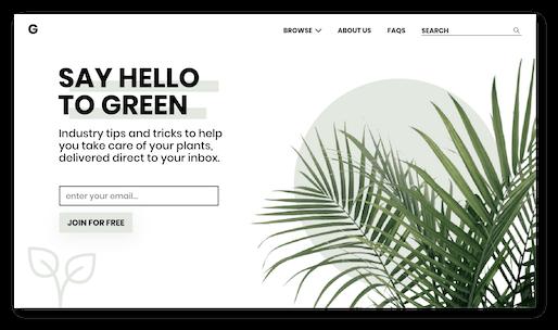Concept landing page design for a plant care subscription website.