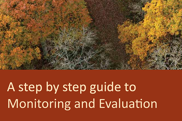 Step by step guide to monitoring and evaluation