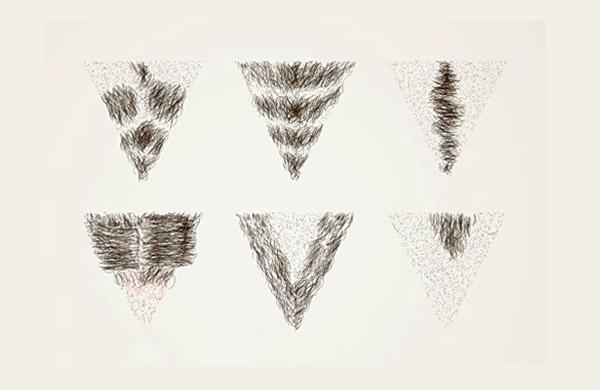 lông mu