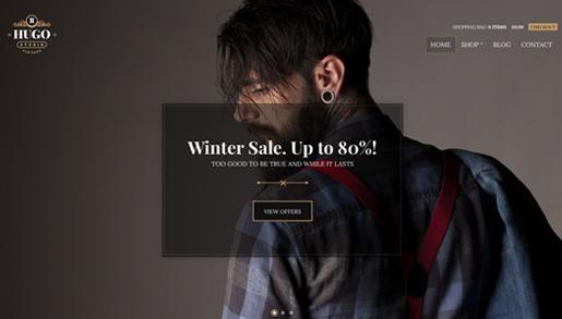 CSS Igniter Hugo WordPress Theme