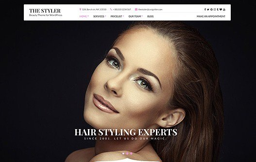 CSS Igniter The Styler WordPress Theme