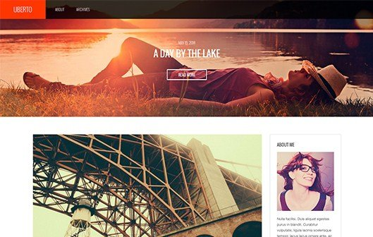 CSS Igniter Uberto WordPress Theme