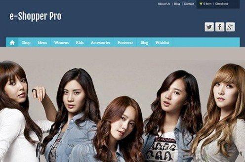 CyberChimps e-Shopper Pro WordPress Theme