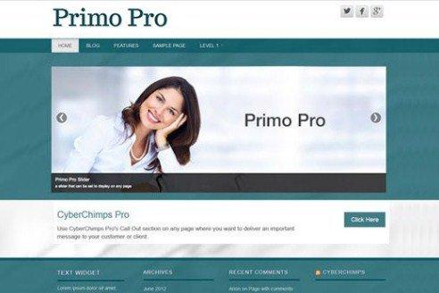 CyberChimps Primo Pro WordPress Theme