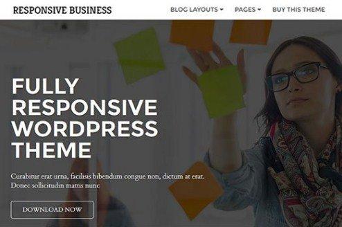 CyberChimps Responsive Business WordPress Theme