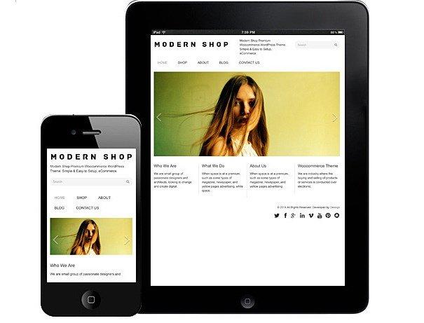 Dessign Modern Shop WooCommerce Themes