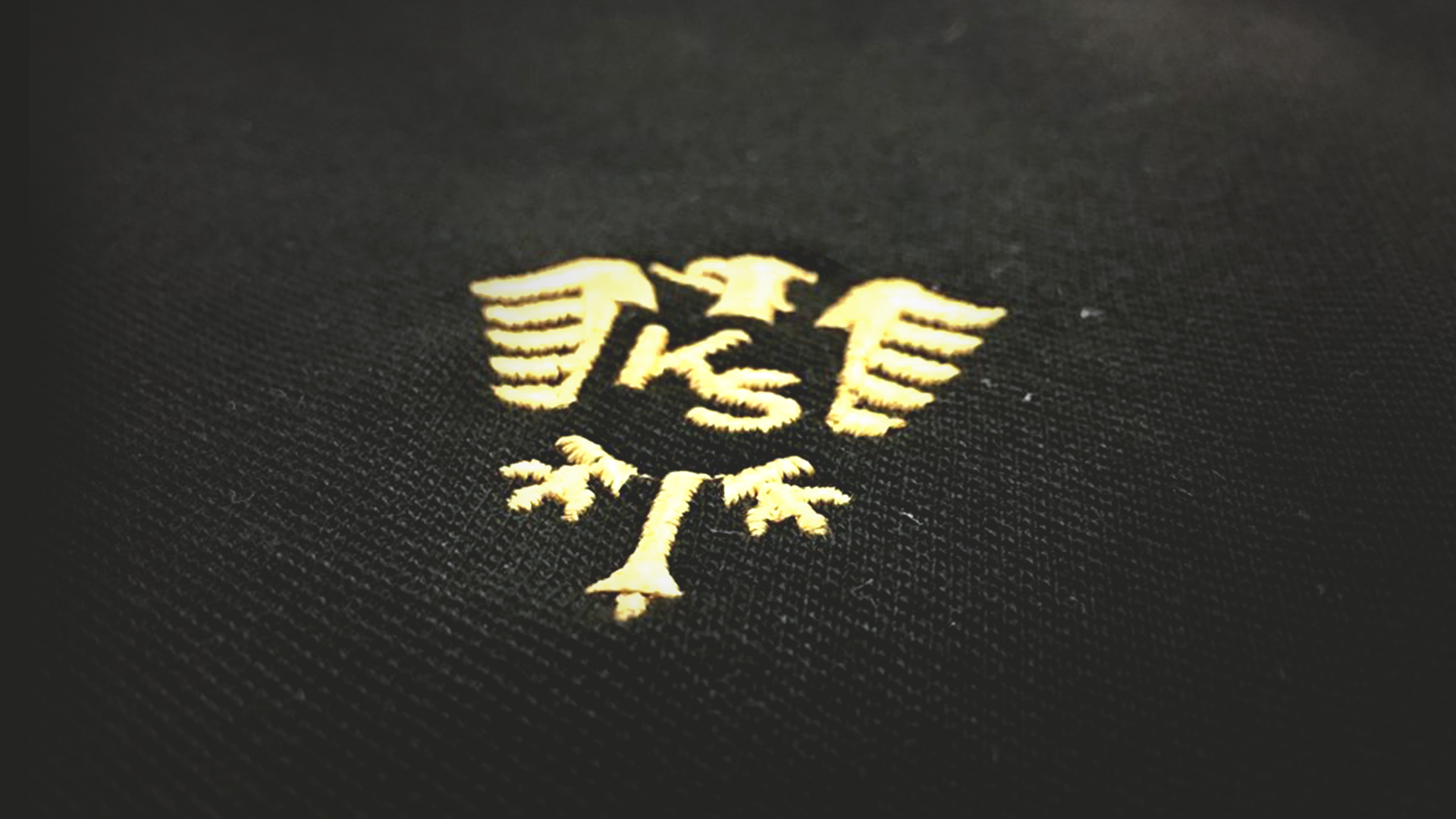 Der Alemannia Adler aus dem Kaiserstäderlogo mit stilisierten Initialen KS für Kaiserstädter.