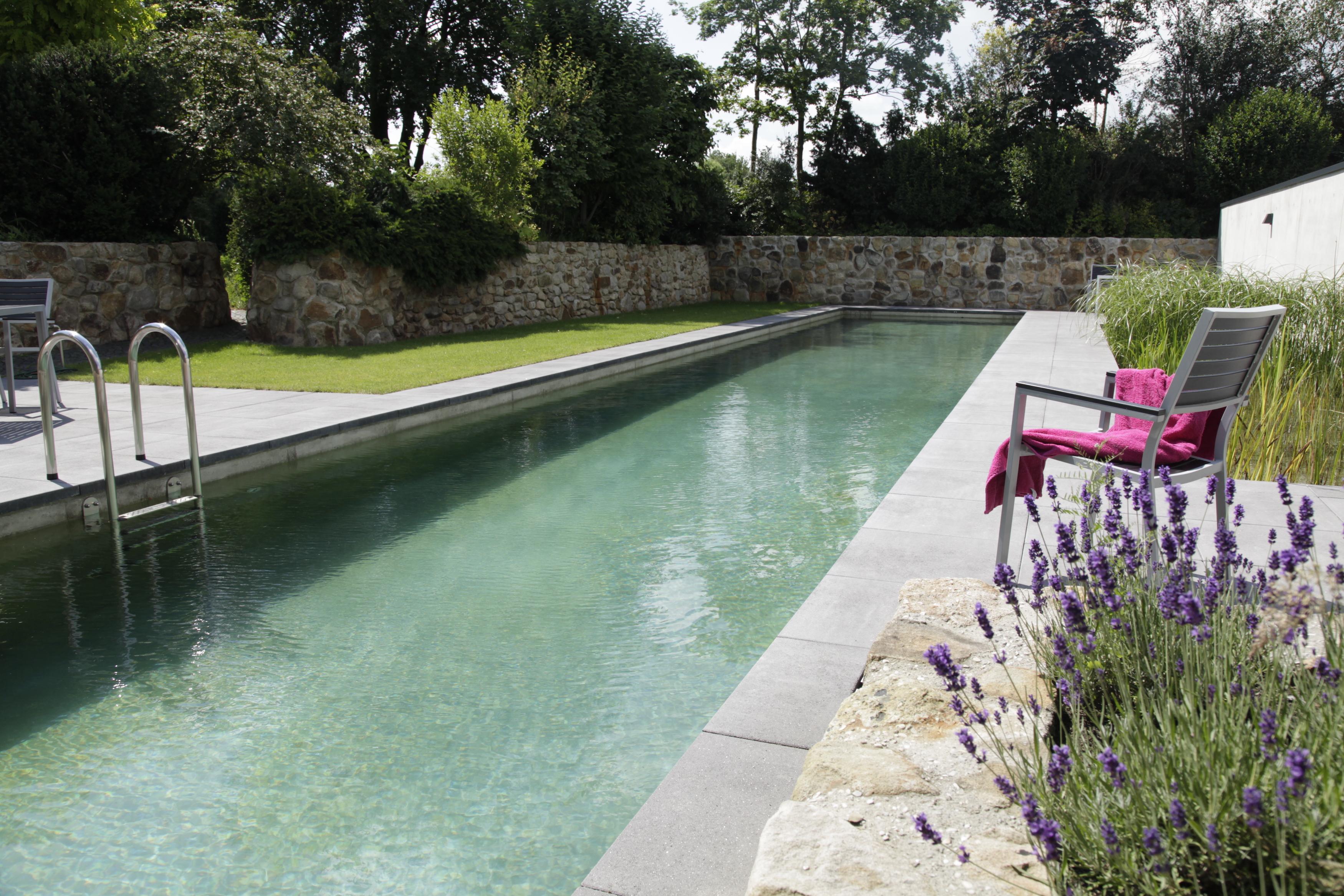 chemical free living pool