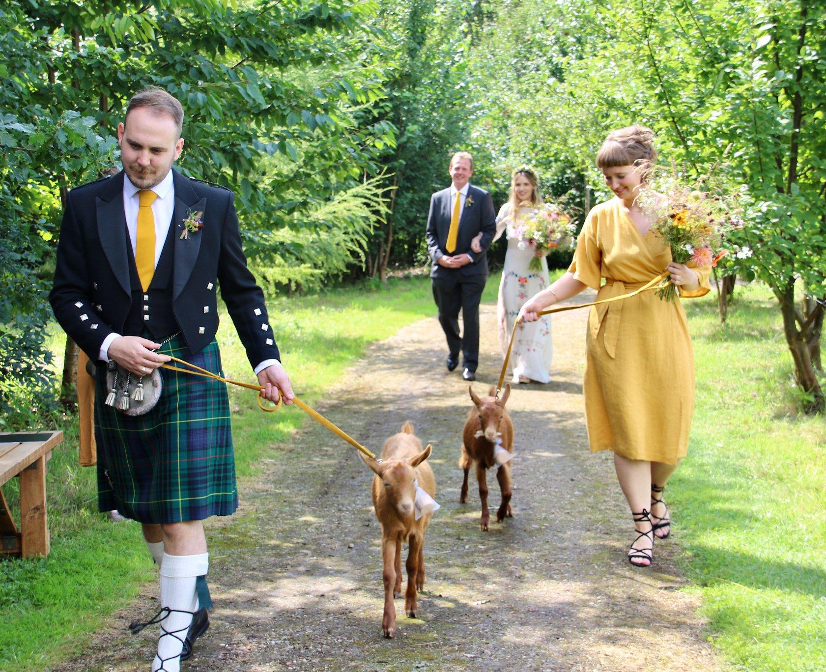 goat kids bearing wedding rings at woodland wedding