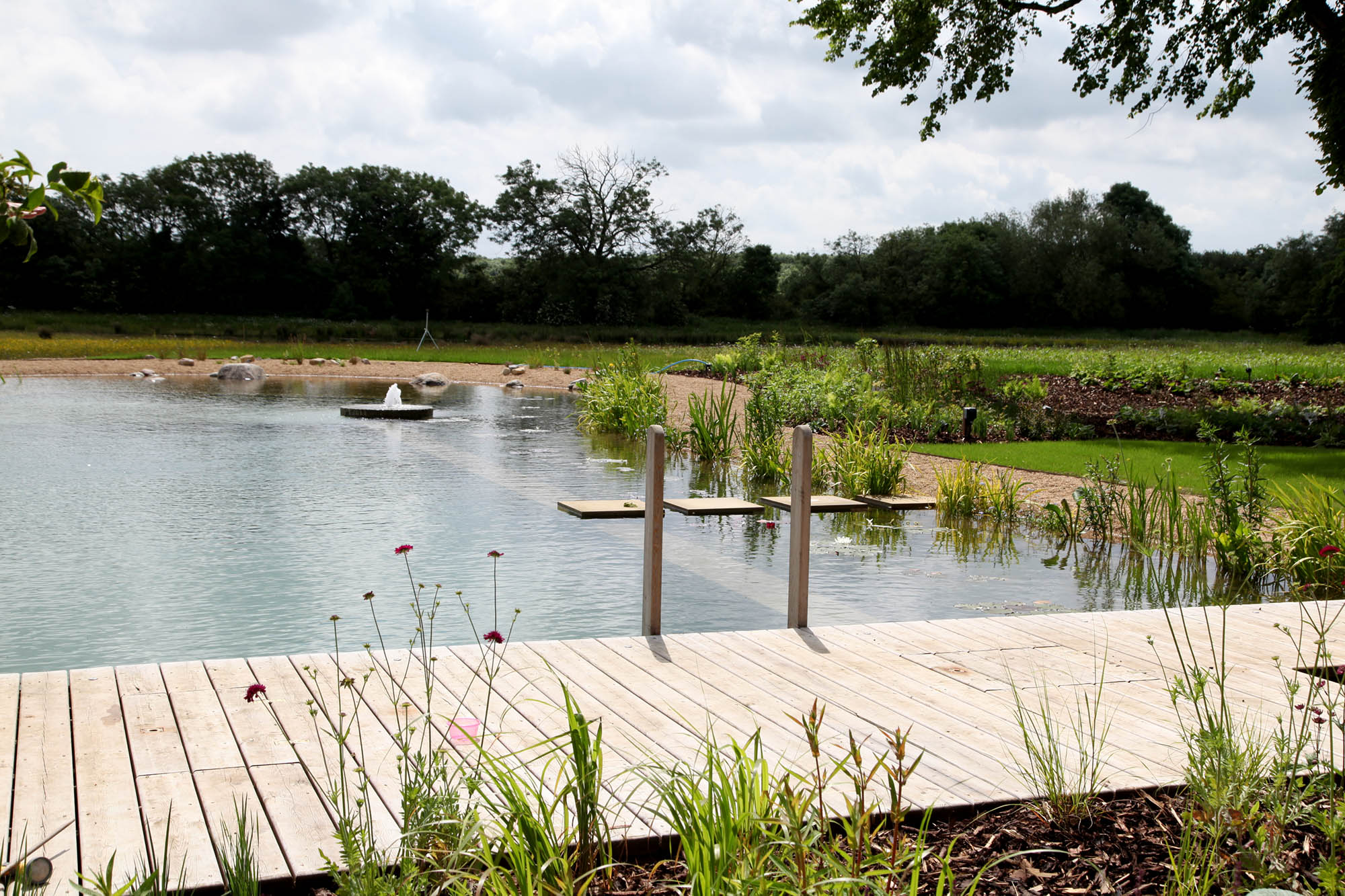 swimming pond with stepping stones
