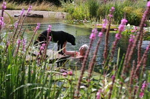 Nottinghamshire Natural Pool