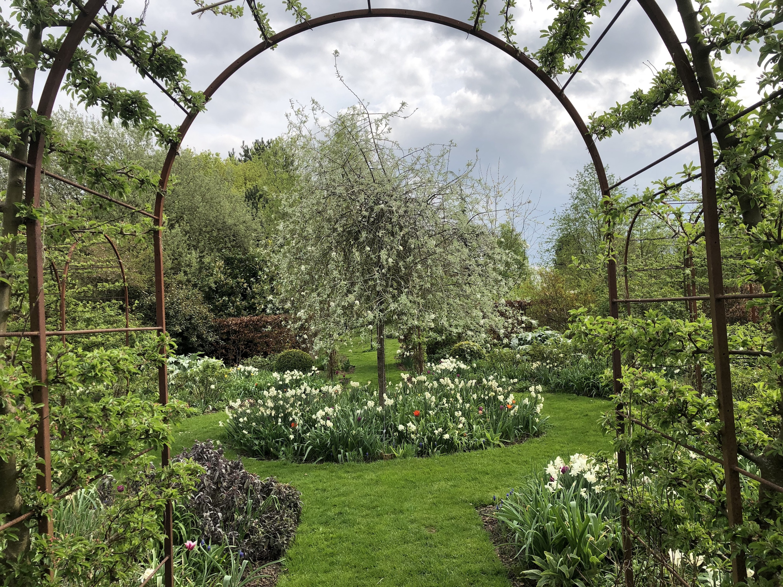 Rose Garden in Spring