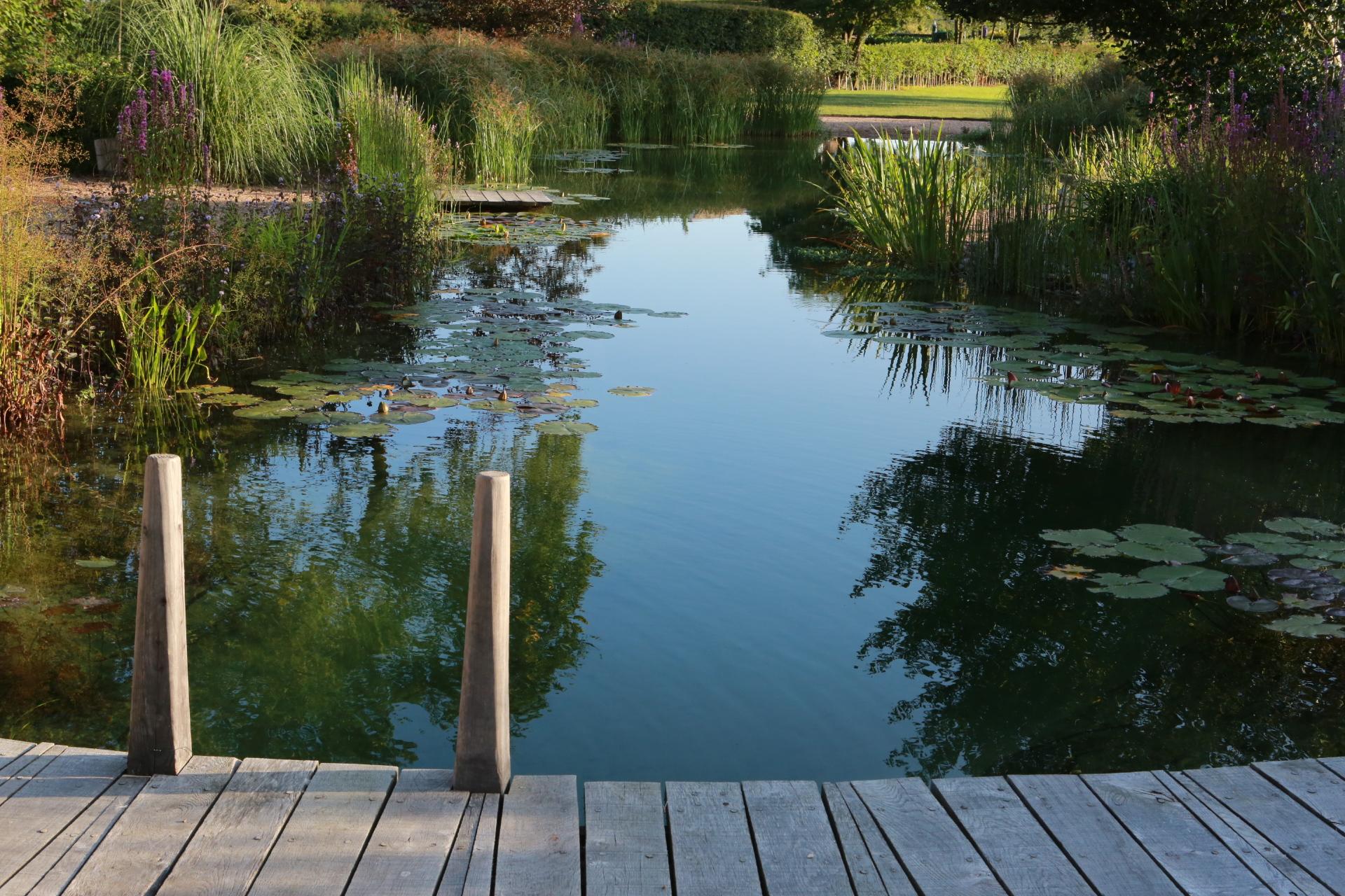 Nottinghamshire Swimming Pond
