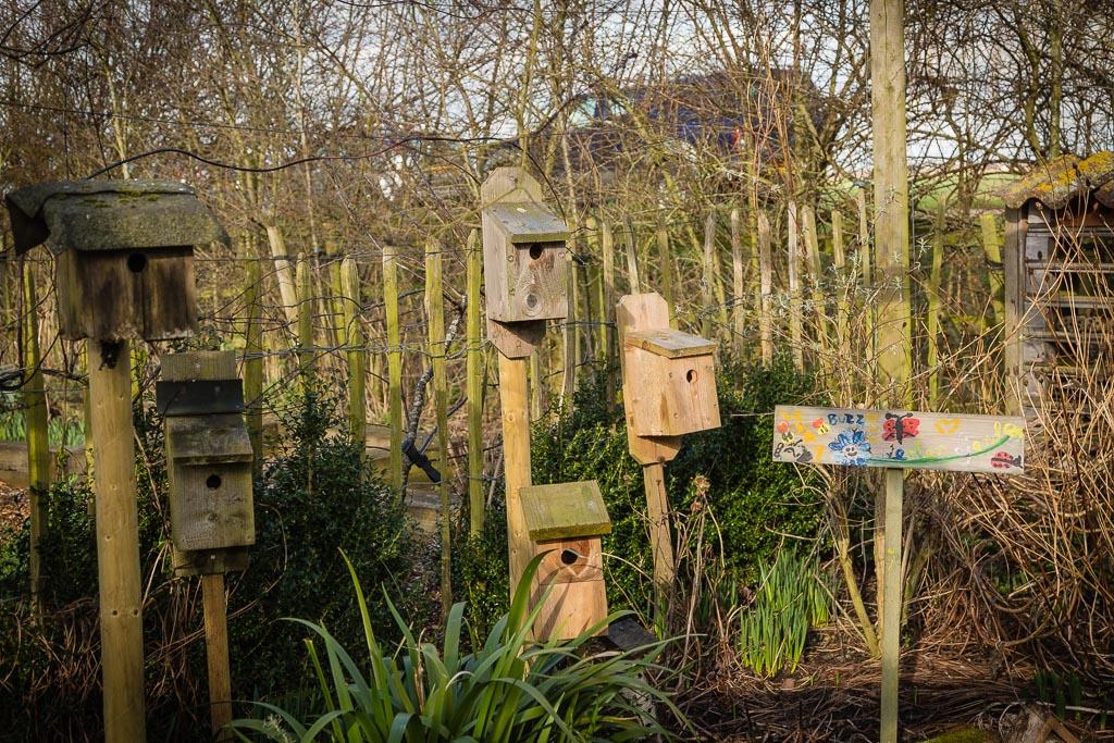 Bird Hotel at Ellicar gardens photos courtesy of Alan Townsend