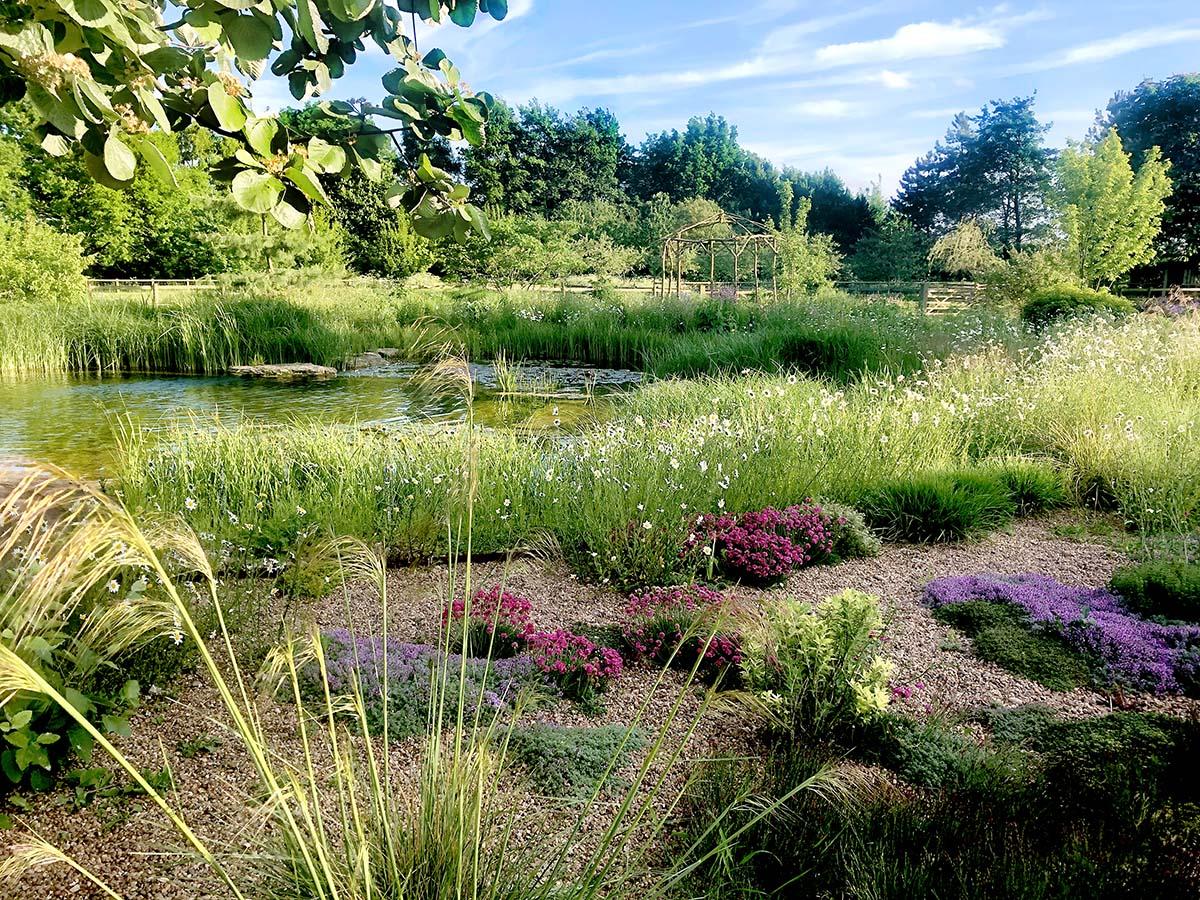 Ellicar Gardens Gravel Garden