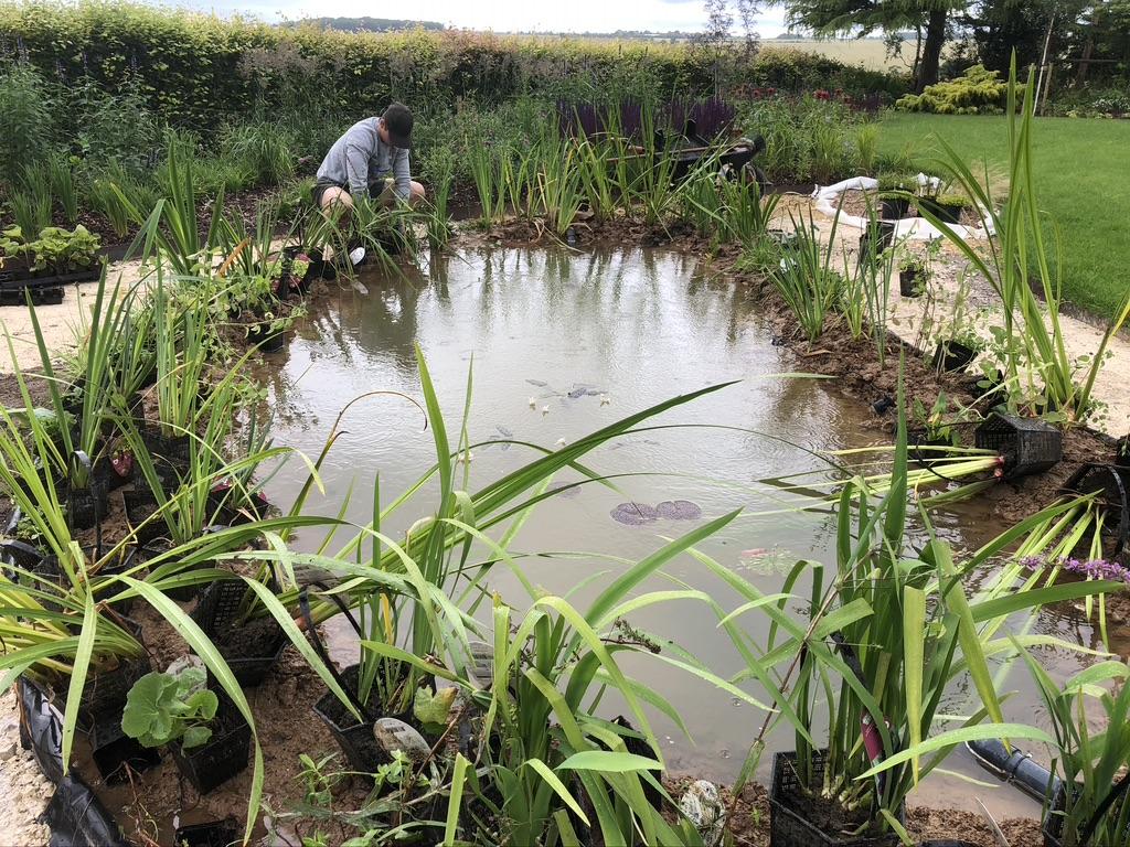 Planting pond