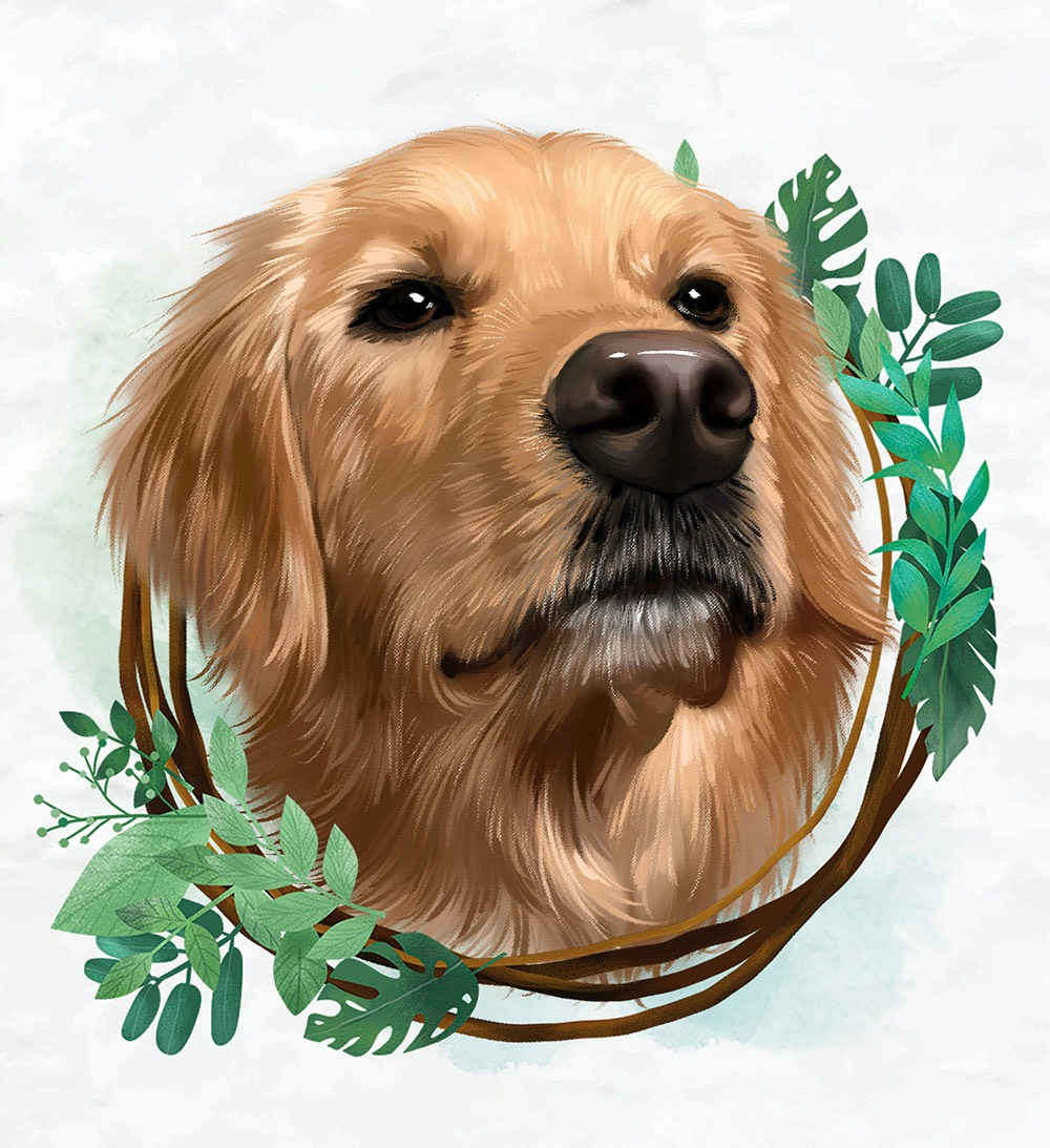 How to Commission Professional Custom Pet Portraits