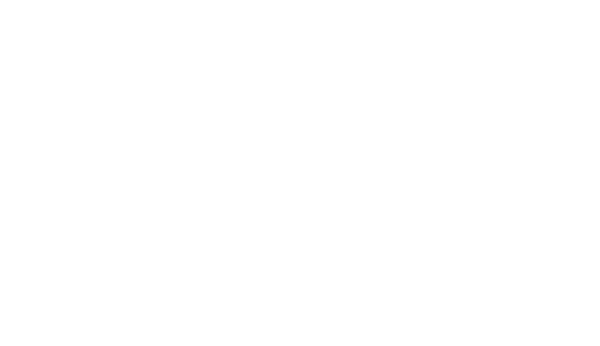 White Norton Secured powered by Verisign logo