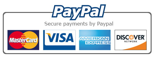 Rectangular Paypal secured payment options