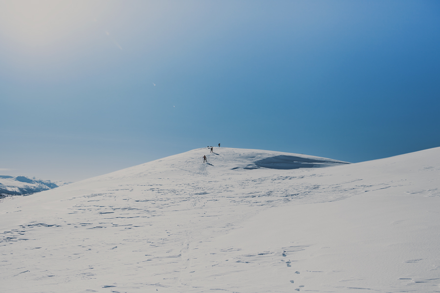 Skiers climbing the top