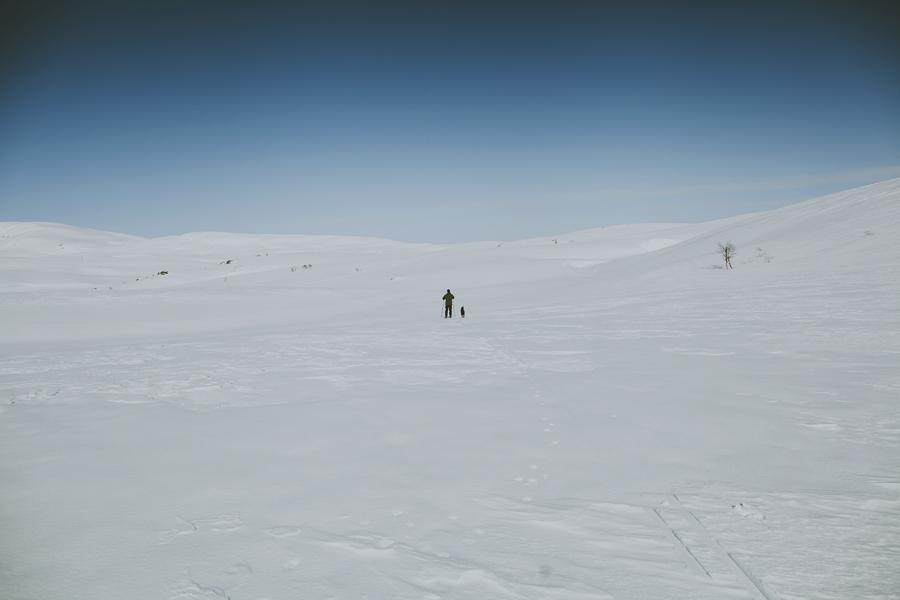 Man and his dog skiing
