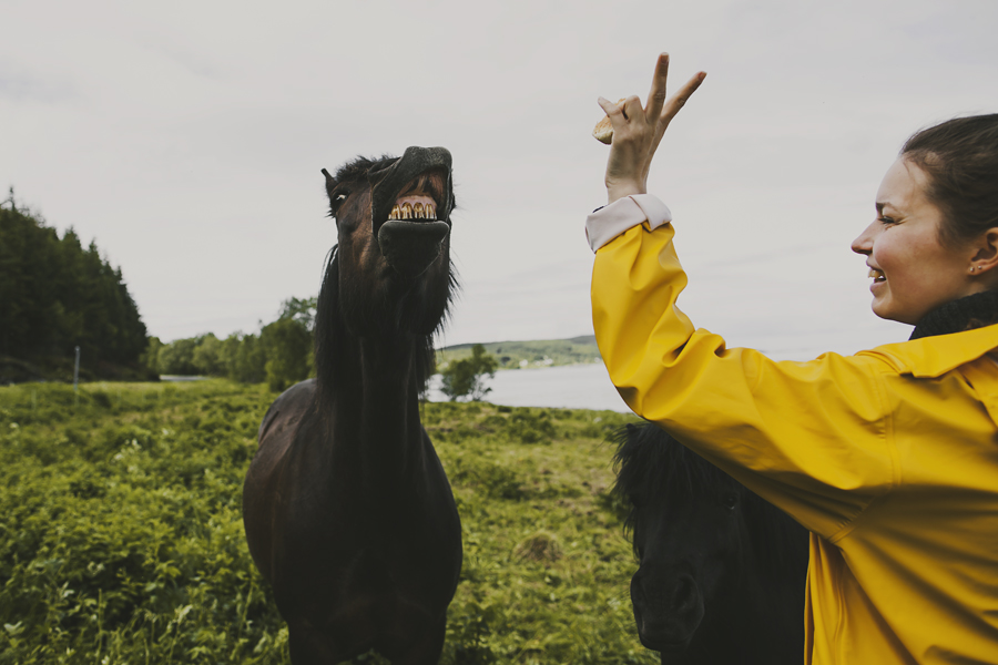 Girl in yellow jacket and horse