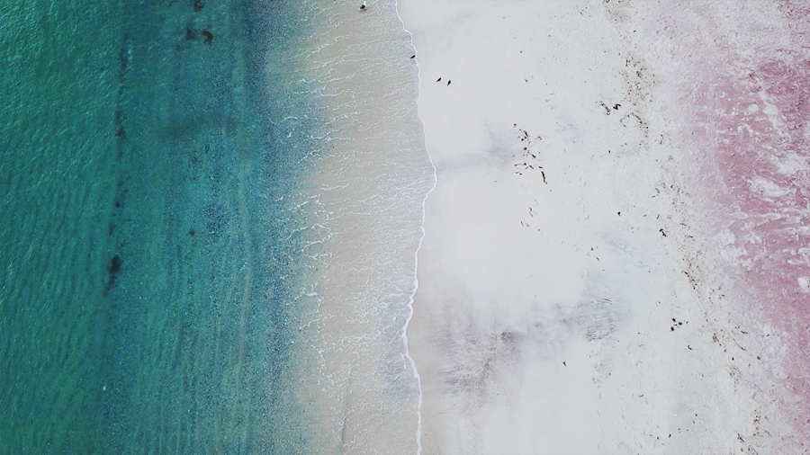 Blue ocean and a pink beach