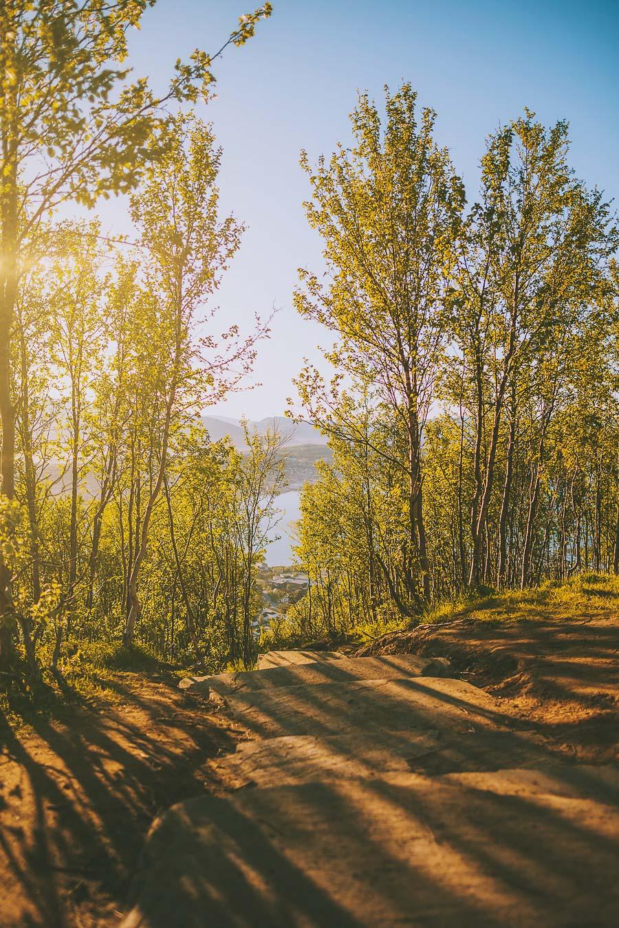 Path leading to Fjellheisen in Tromsø