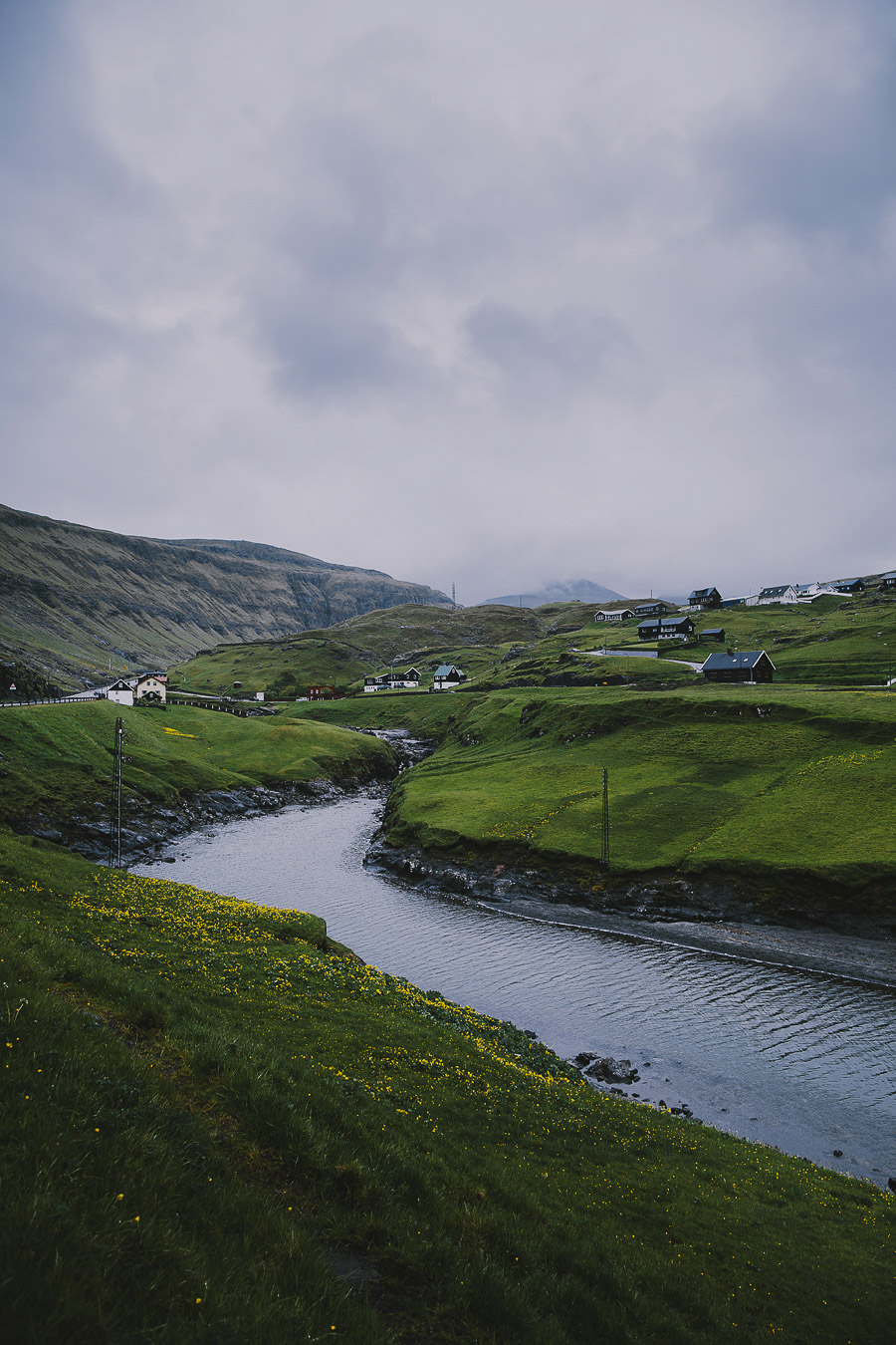 Houses standing by the river