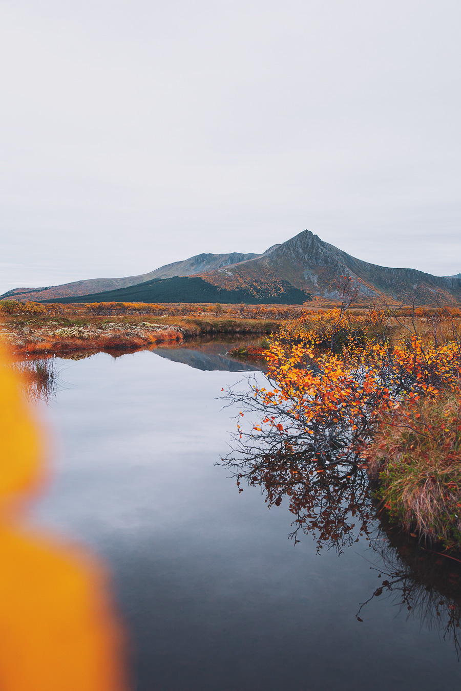 Autumn colours and a mountain reflected in water