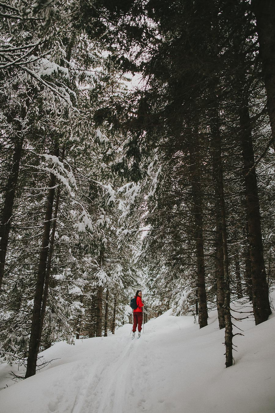 Girl in red jacket surronded by tall trees