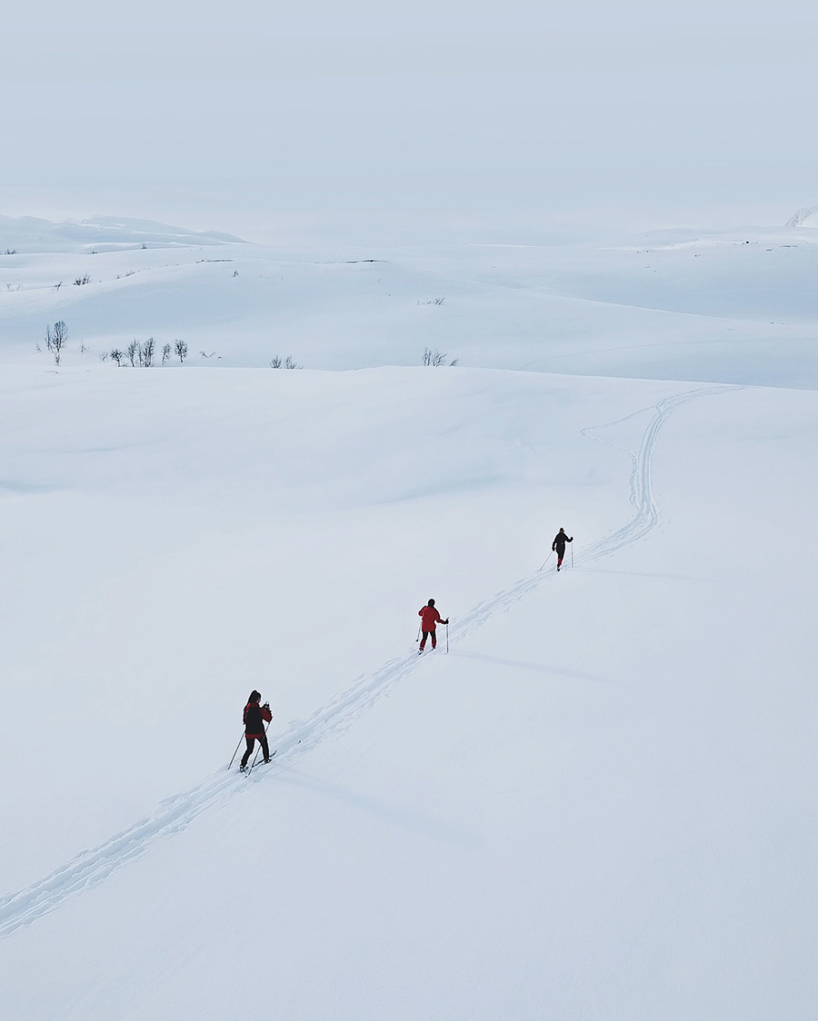 Three people skiing in Beiarn