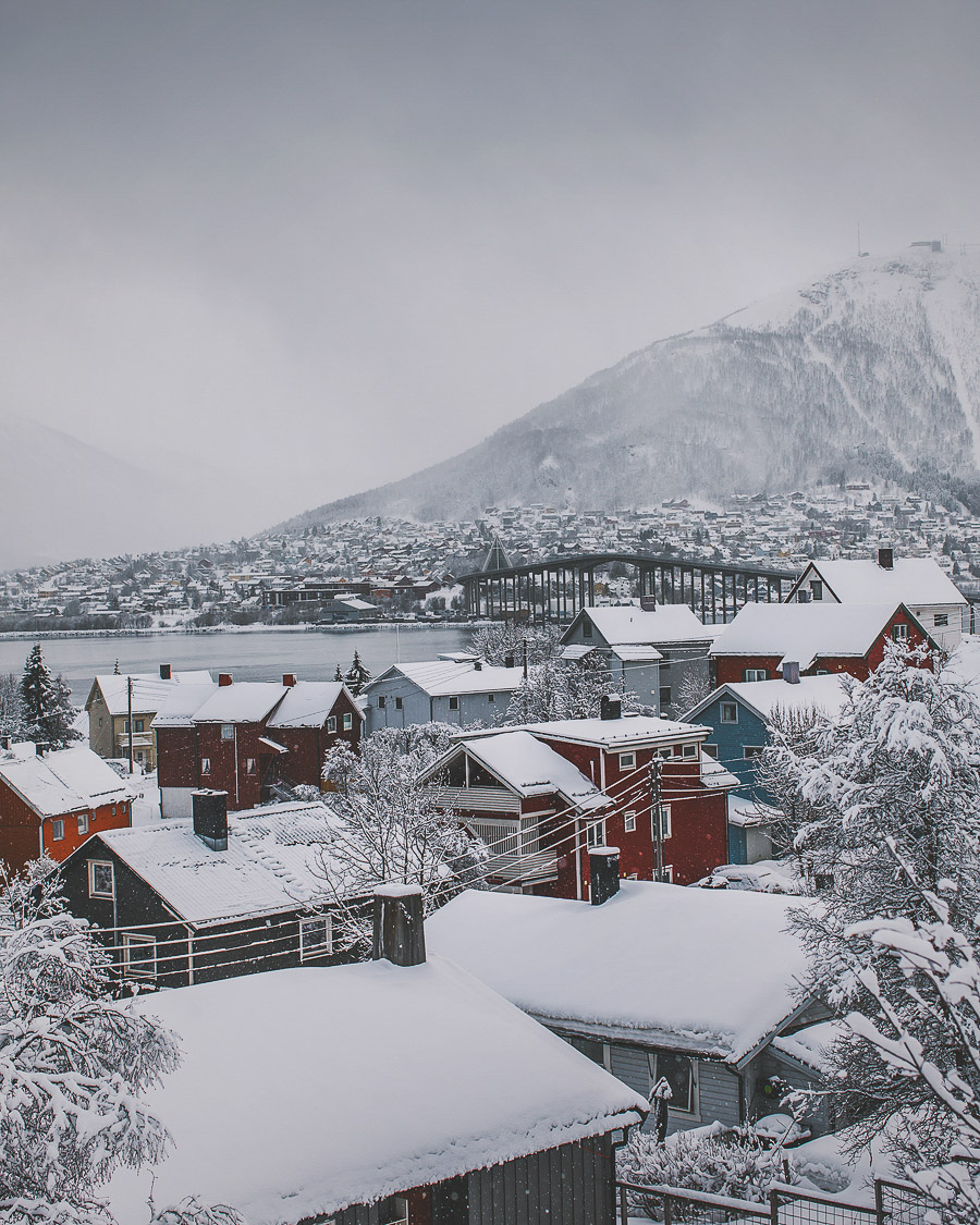 Colourful houses in Tromsø