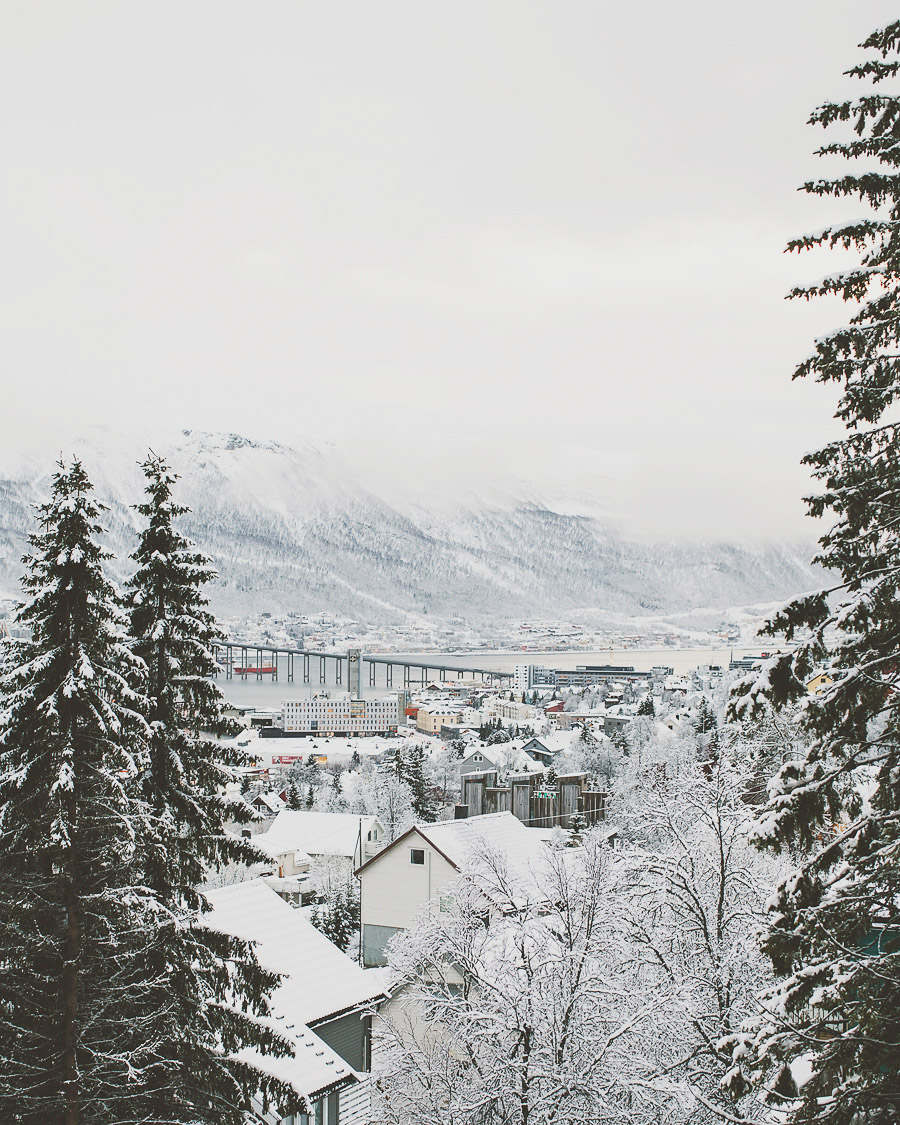 Tromsø city covered in a white blanket