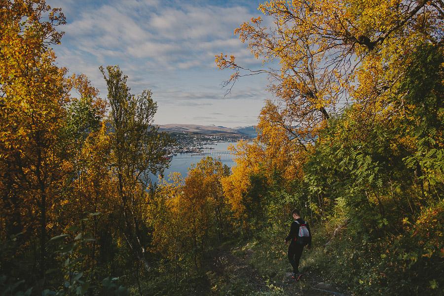 Boy hiking in autumn landscape