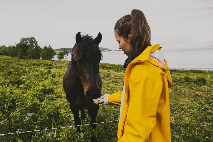 Girl in yellow jacket feeding horse