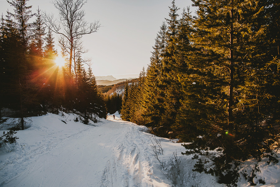 Sun shining on the snow