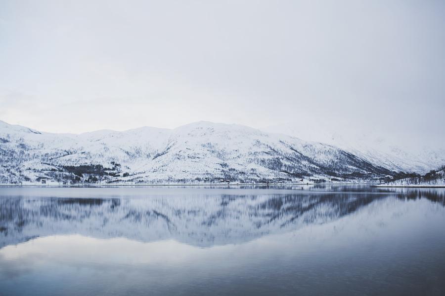 Andøya day three