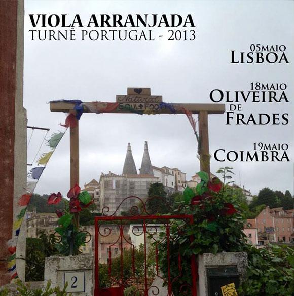 Festival Viola em Casa Brasileira - 2014