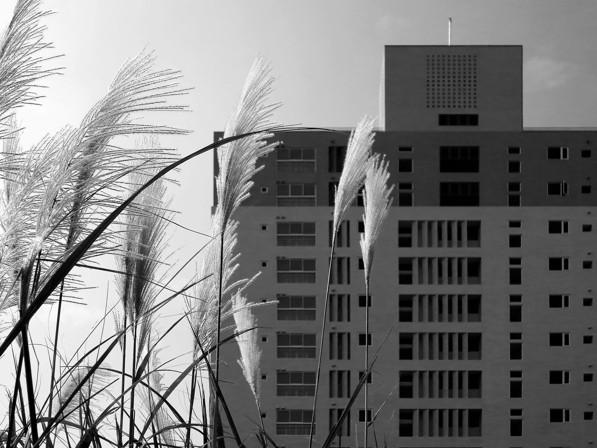 竹北原見築大樓外觀空拍